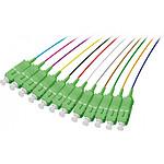 Pigtail OS2 SC/APC LSOH 12 connecteurs (2M)