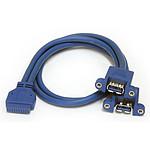 StarTech.com Câble USB 3.0 vers adaptateur carte mère femelle/femelle