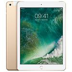 Apple iPad Wi-Fi 32 GB Wi-Fi + Cellular Or