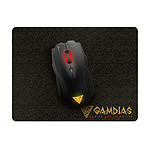 GAMDIAS Demeter E1 + Pad