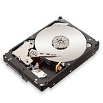 "Lenovo Entreprise ThinkServer HDD 1 To 2.5"" (4XB0G45721)"
