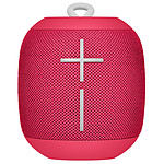 UE Wonderboom Raspberry