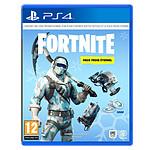 Fortnite - Eternal Cold Pack (PlayStation 4)
