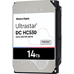 Western Digital Ultrastar DC HC530 14 To (0F31051)
