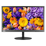 "Lenovo 23.8"" LED - ThinkVision TE24-10"