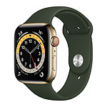 Apple Watch Series 6 GPS + Cellular Stainless steel Gold Bracelet Sport Cyprees Green 44 mm
