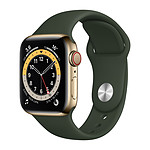 Apple Watch Series 6 GPS + Cellular Stainless steel Gold Bracelet Sport Cyprees Green 40 mm