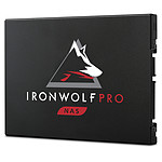 Seagate SSD IronWolf Pro 125 240 Go