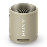 Sony SRS-XB13 Champagne