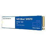 Western Digital SSD WD Blue SN570 250 Go