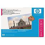 HP Papier Photo Premium Plus 458 mm x 15,2 m, satiné (rouleau)