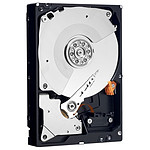 Western Digital Caviar RE4 500 Go SATA 3Gb/s