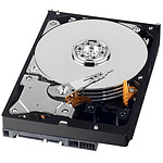 Western Digital AV-GP 500 Go SATA 3Gb/s