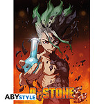 Dr Stone -  Poster Senku (52 X 35 Cm)