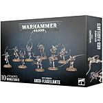 Warhammer 40k - Adepta Sororitas Arco-Flagellants