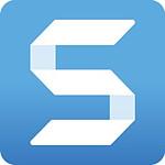 Snagit 2020 - Licence perpétuelle - 1 poste - A télécharger