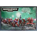 Warhammer 40k - Craftworlds Guardians