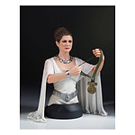 Star Wars A New Hope - Buste 1/6 Leia Hero of Yavin 17 cm