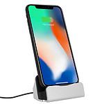 Avizar Station d'accueil Argent pour Smartphones Apple iPhone à connecteur Apple Lightning