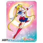 Sailor Moon -  Plaque Métal Sailor Moon -  (28 X 38 Cm)