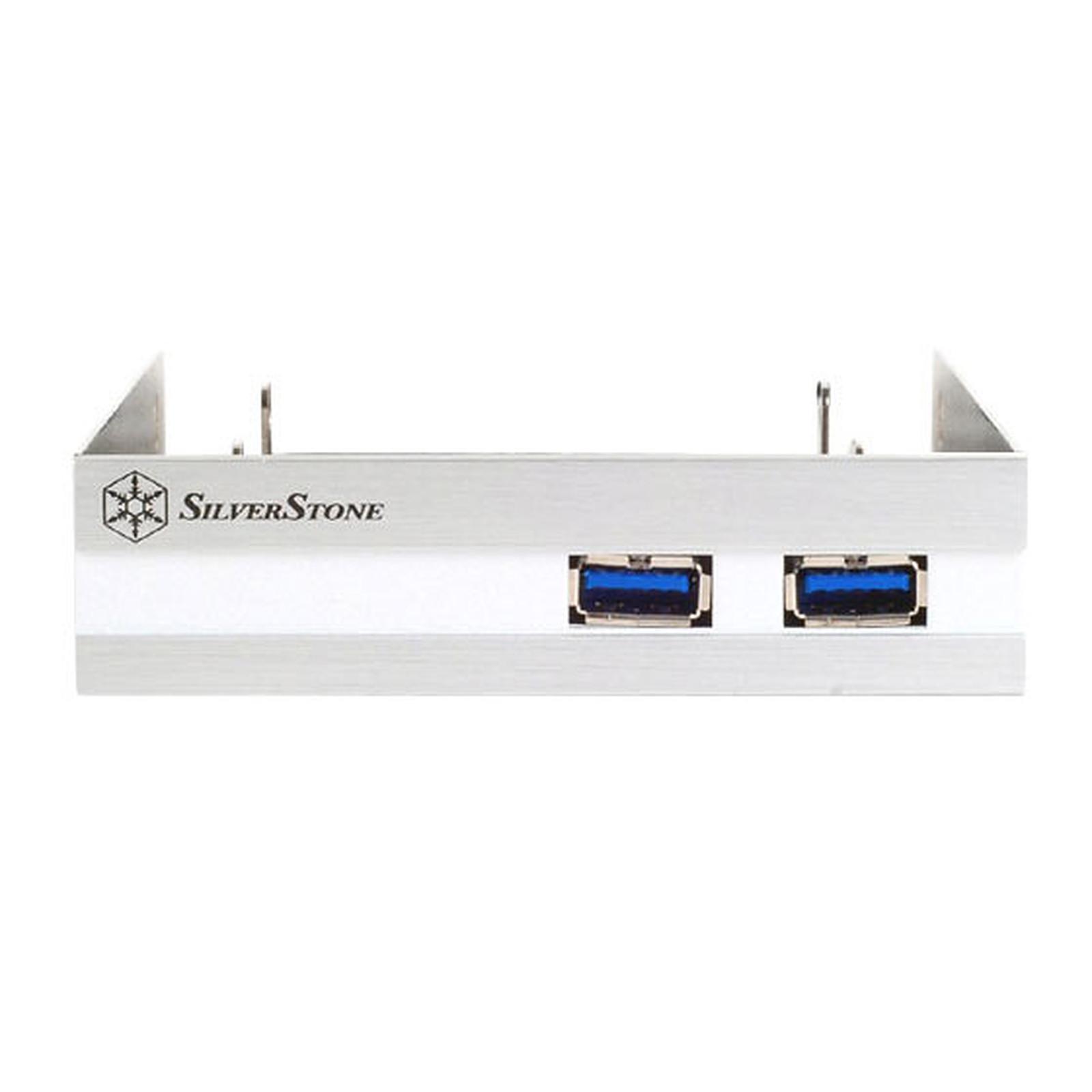 SilverStone FP36 (argent)