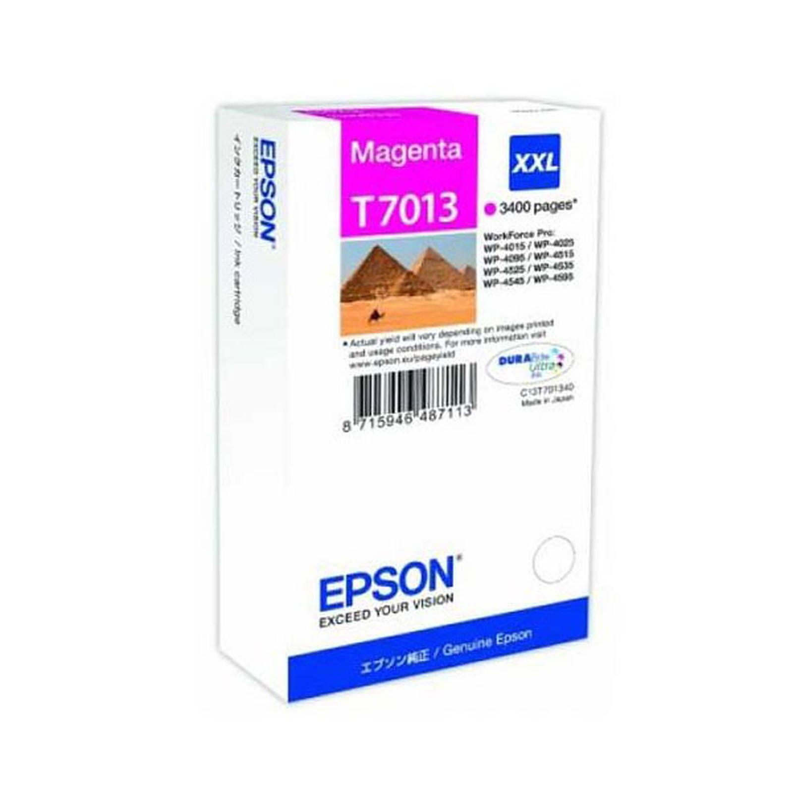 Epson T7013 XXL