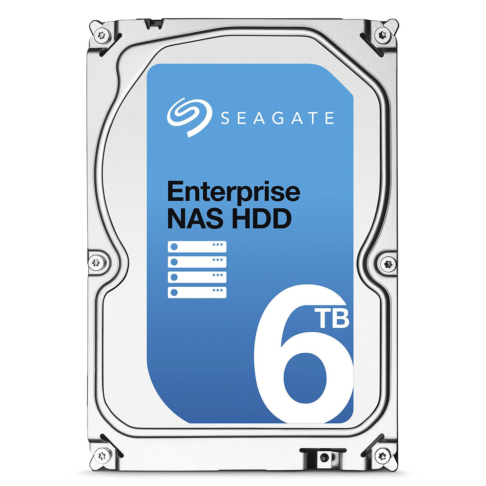Seagate Enterprise NAS HDD 6 To