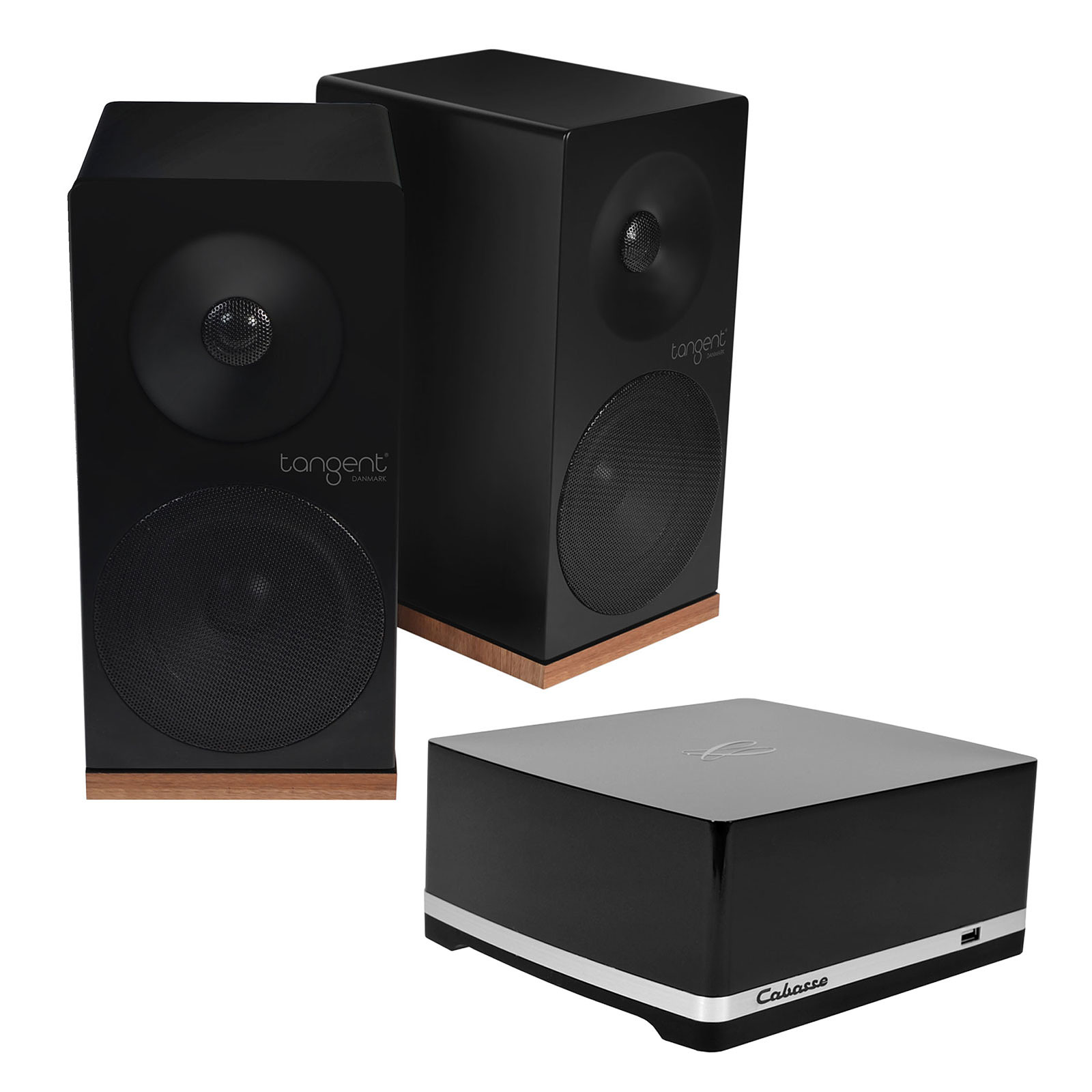 Cabasse Stream AMP 100 + Tangent Spectrum X5 Noir