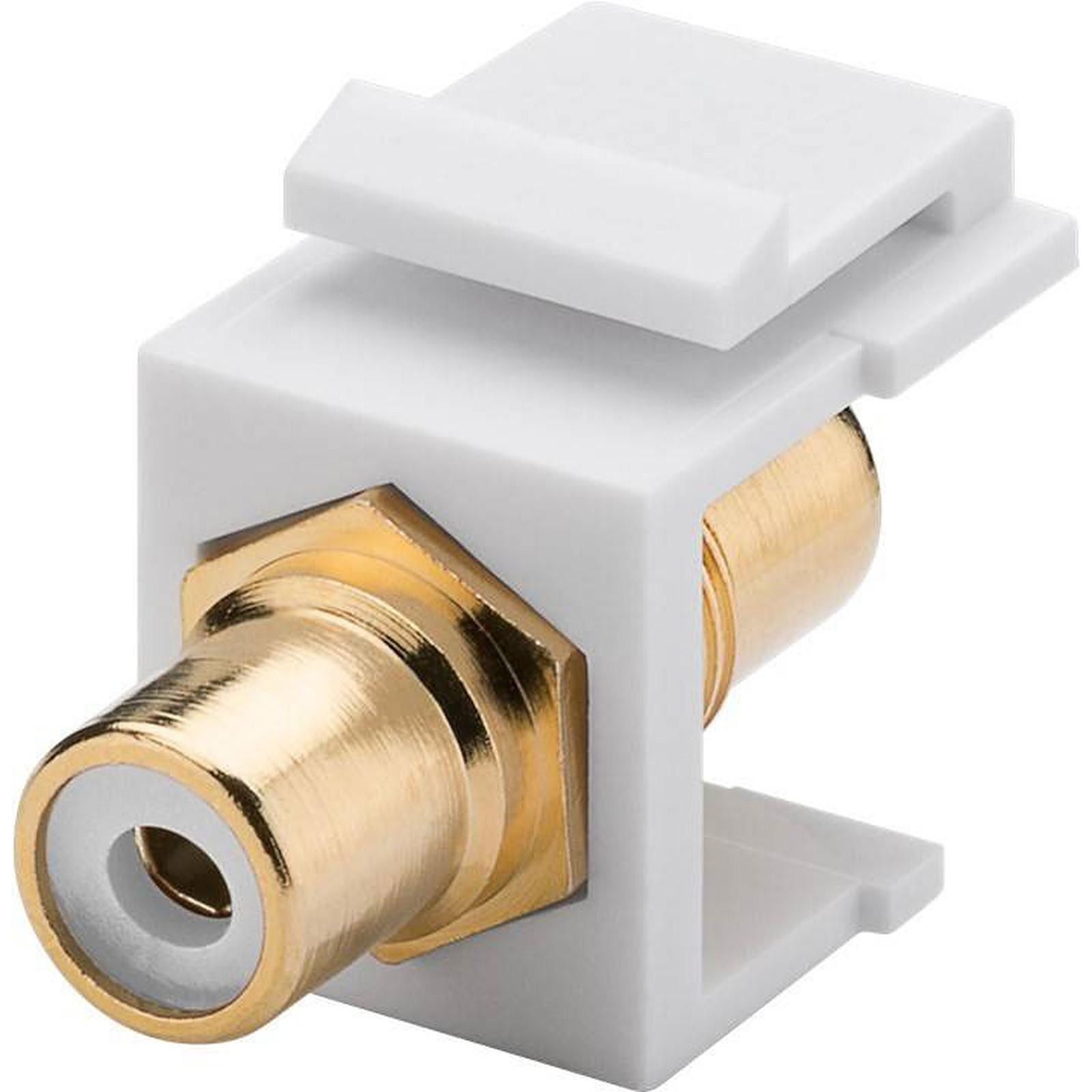 Goobay coupleur RCA blanc pour boitier réseau type Keystone