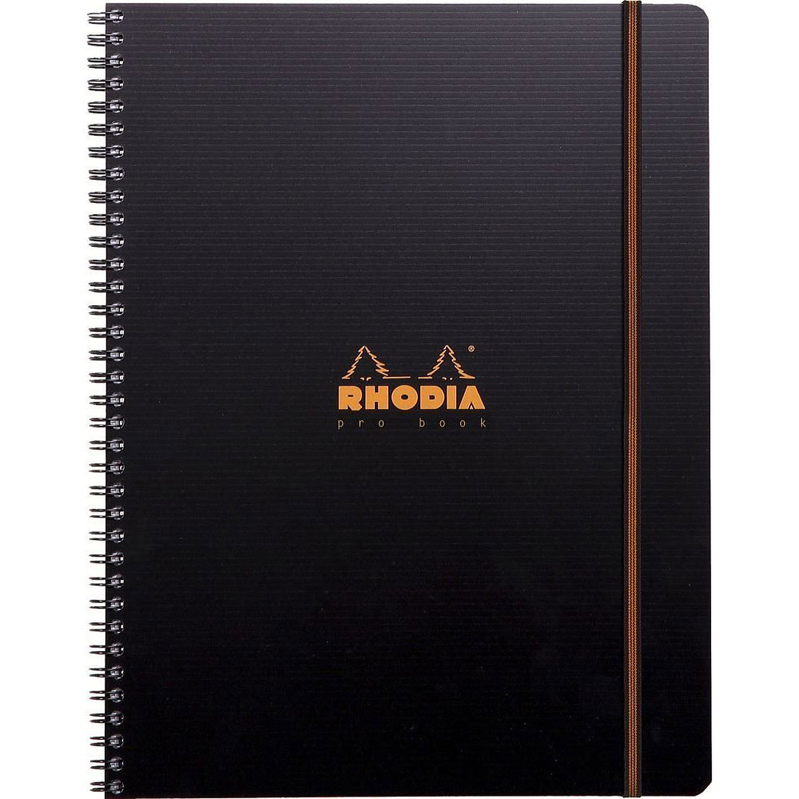 Rhodia Probook Rhodiactive A4+