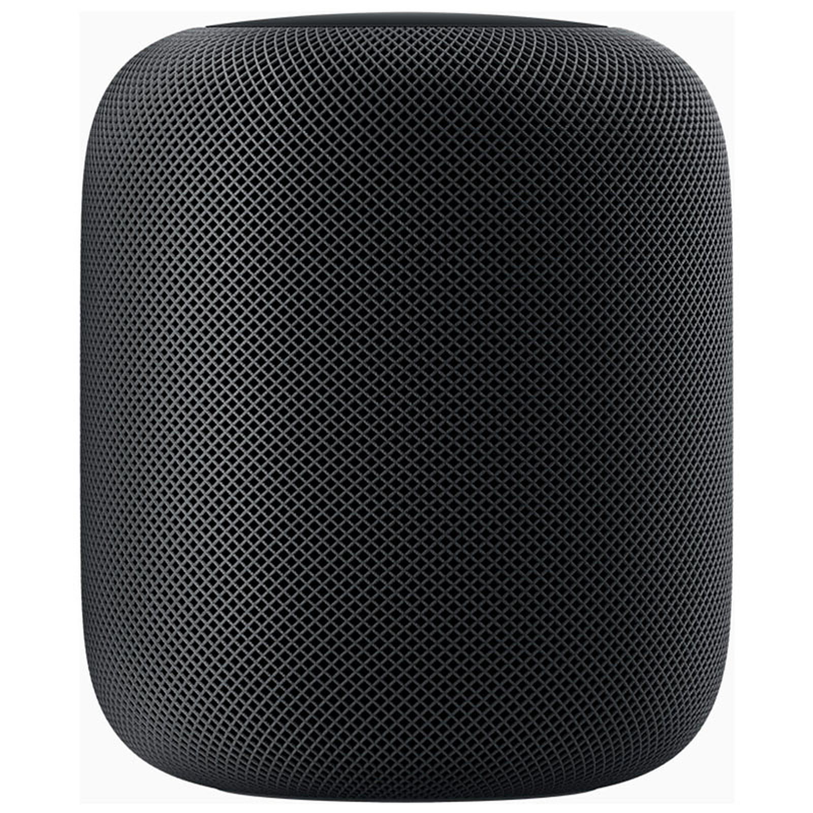 Apple HomePod Gris Sidéral