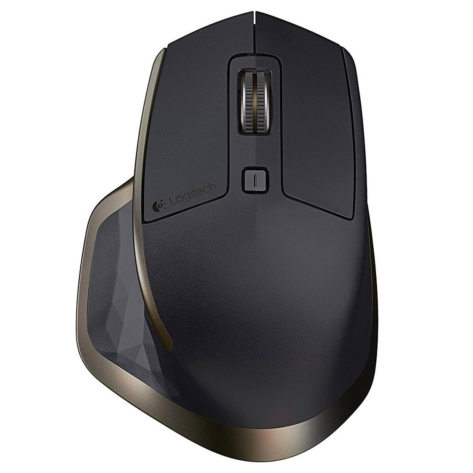 Logitech MX Master Wireless Mouse for Business Météorite