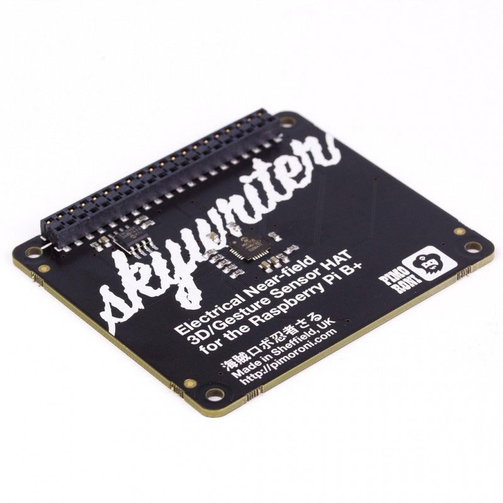 Pimoroni Skywriter HAT