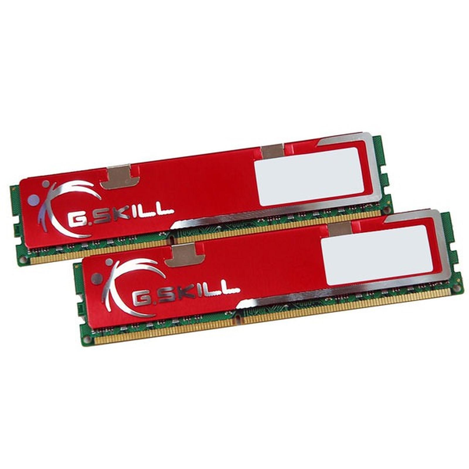G.Skill NQ Series 4 Go (2x 2Go) DDR3 1333 MHz
