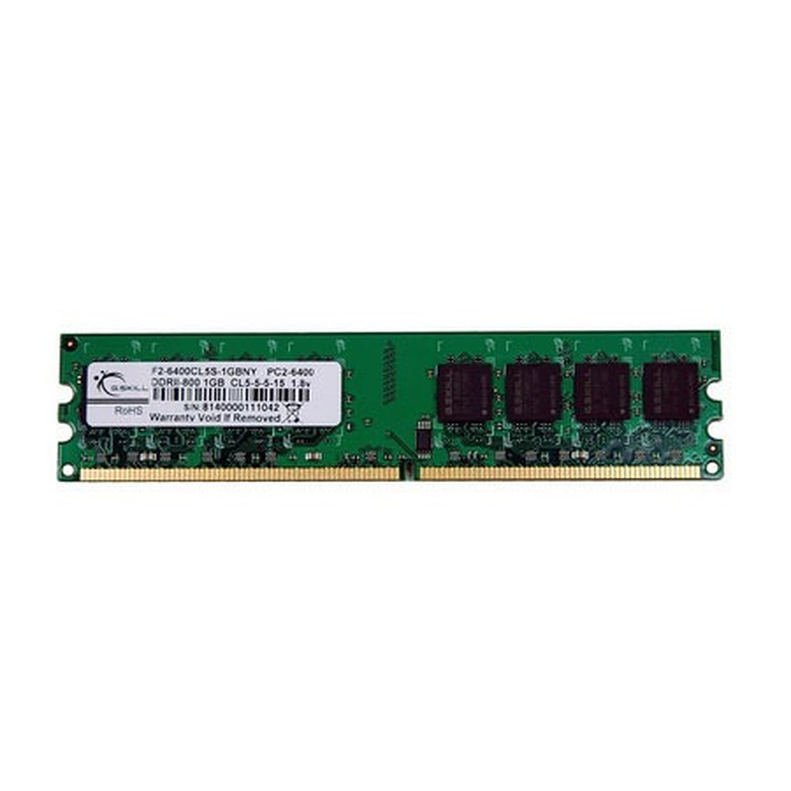 G.Skill NY Series 1 Go DDR2 800 MHz