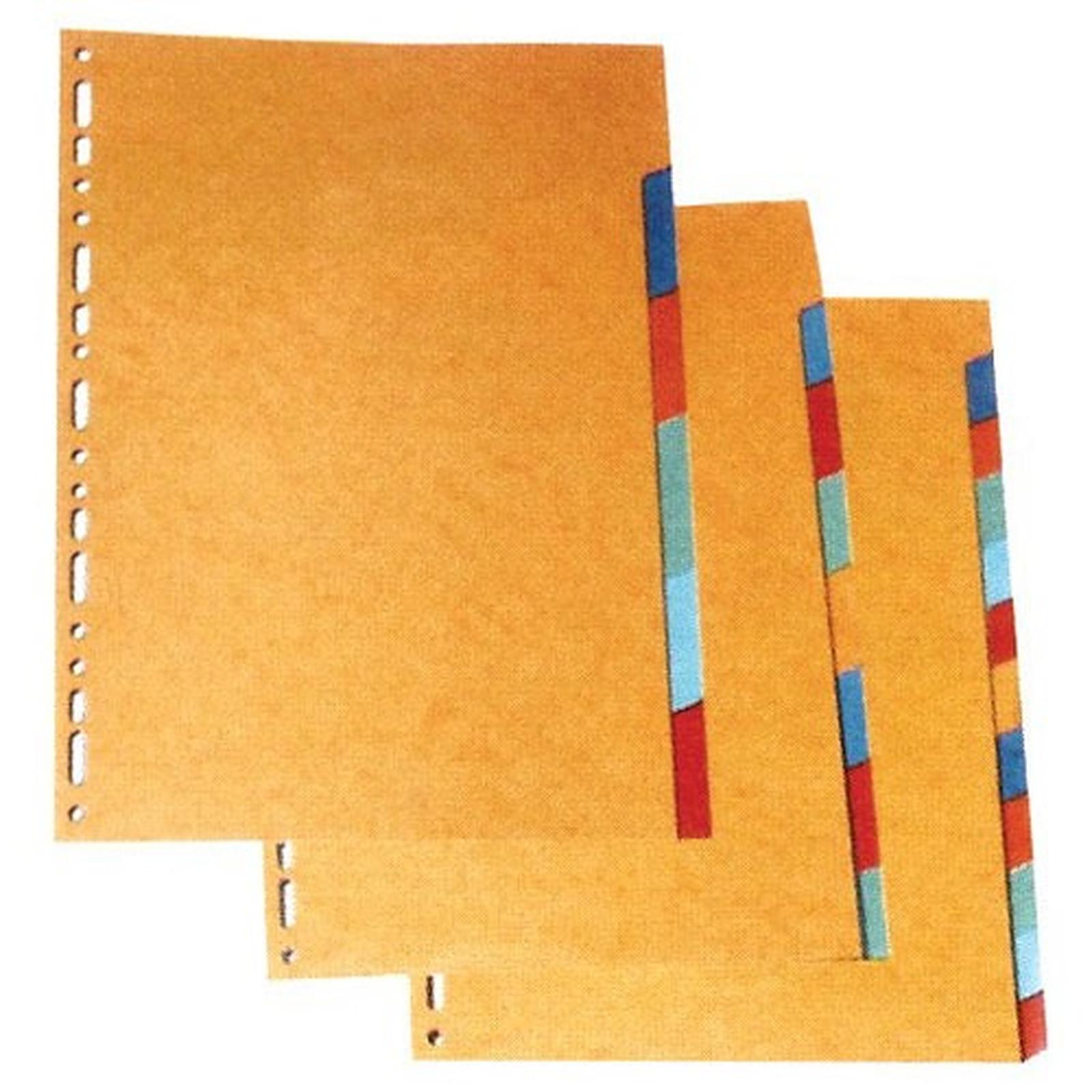 Intercalaires carte lustrée Format A4 12 positions