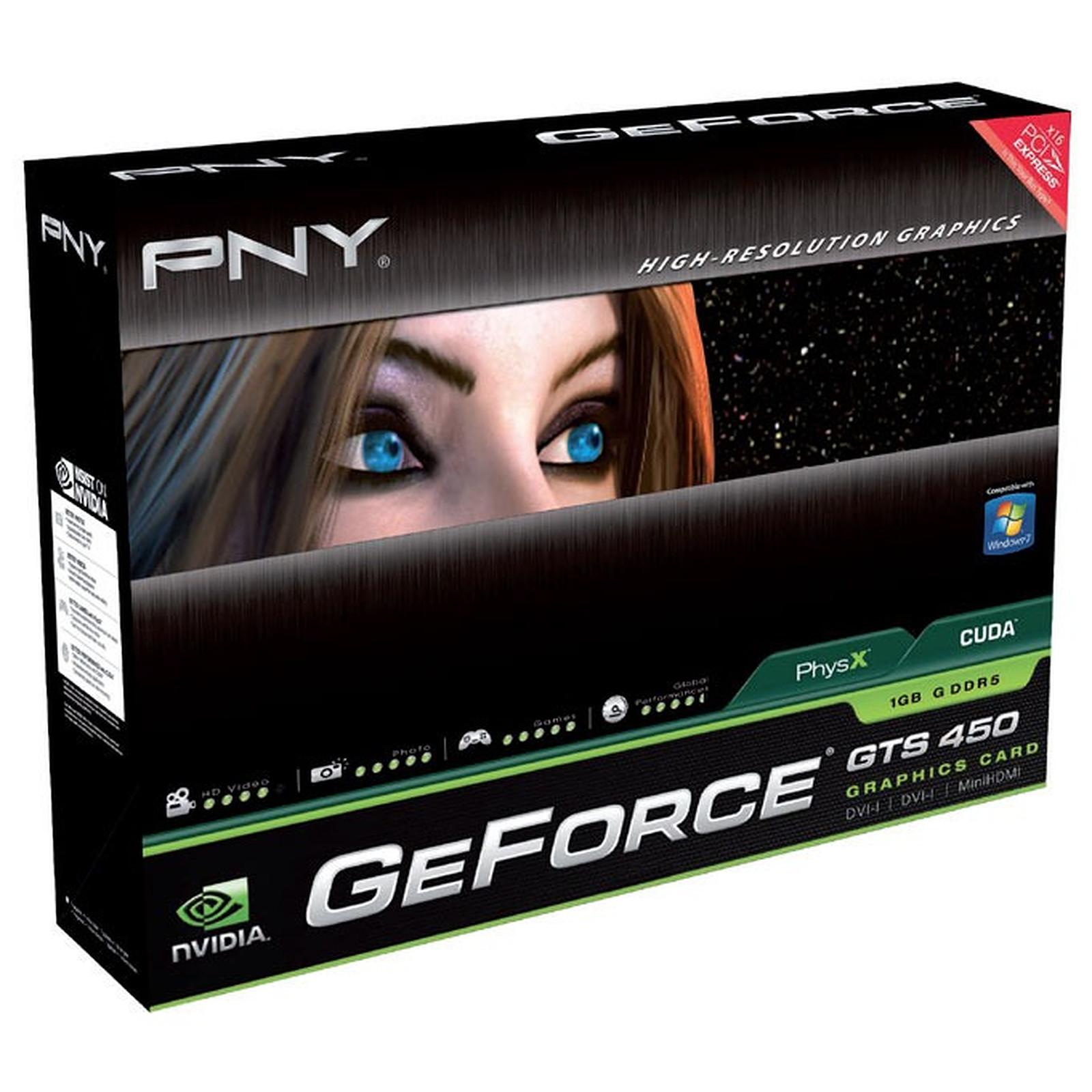 PNY GeForce GTS 450 PCI-E 1Go