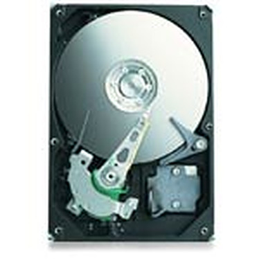Seagate Barracuda ES.2 1 To