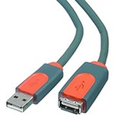 Belkin rallonge USB 2.0 Type AA (Mâle/Femelle) -  3 m CU1100AED10