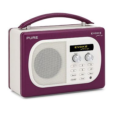PURE EVOKE Mio Grape PURE EVOKE Mio Grape - Radio FM portable compatible RNT
