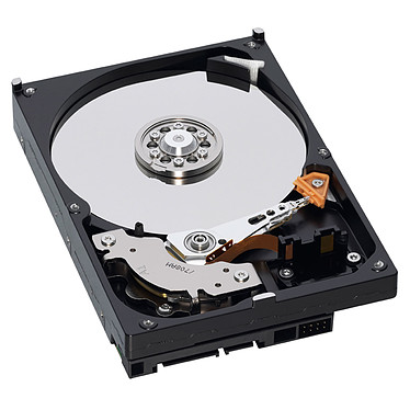 Western Digital AV 320 Go SATA 3Gb/s