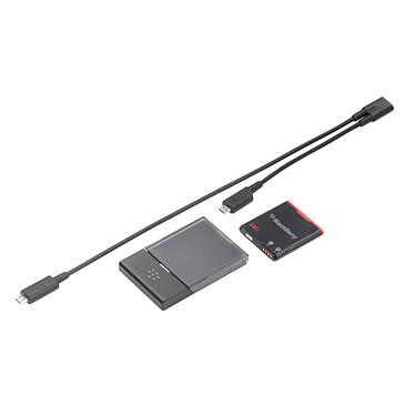 BlackBerry Batterie E-M1 + câble Y de recharge pour BlackBerry Curve 9350/9360/9370