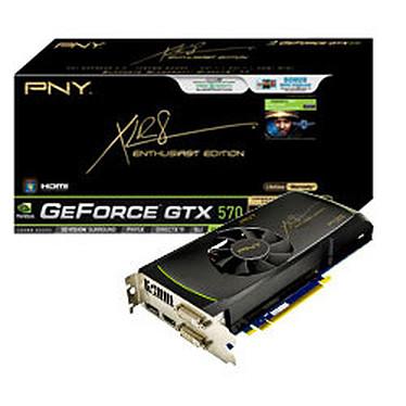 PNY GeForce GTX 570 1280 MB