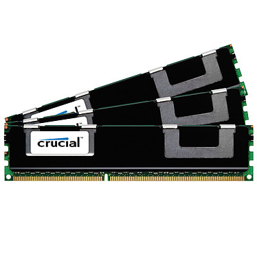 Crucial 48 Go (3 x 16 Go) DDR3 1066 MHz CL7 ECC Registered