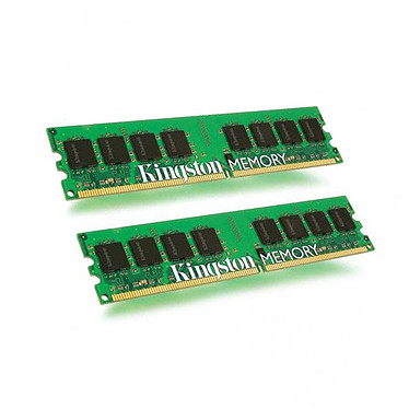 Kingston for Dell 4 Go (2 x 2 Go) DDR2 667 MHz ECC Registred Kit Dual Channel DDR2-SDRAM PC2-5300 - KTD-PE6950/4G (garantie à vie par Kingston)