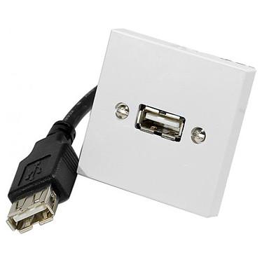 Plastron 45x45 USB femelle / femelle (avec câble 20 cm)