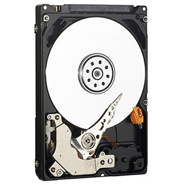WD AV-25 Mobile 320 Go SATA 3Gb/s