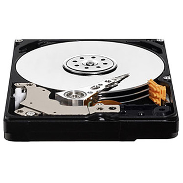 Western Digital WD AV-25 Mobile 500 Go SATA 3Gb/s 6.8mm pas cher
