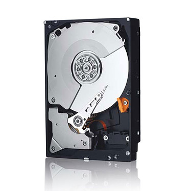WD XE 300 Go