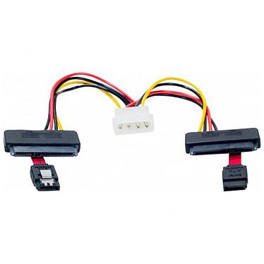 Câble SATA 2-en-1 avec alimentation Molex (pour 2 HDD ou SSD)